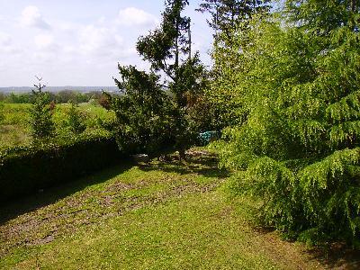 Le jardin du CFMI
