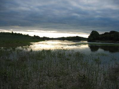 Paysage de bord de Loire